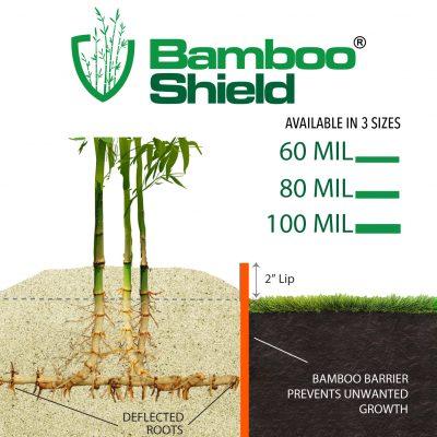 Bamboo Shield Sizes